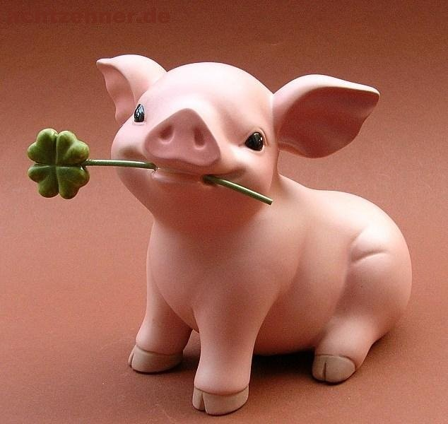 Glücksschweinchen 2020
